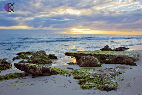Burns Beach  by Kellie Detez