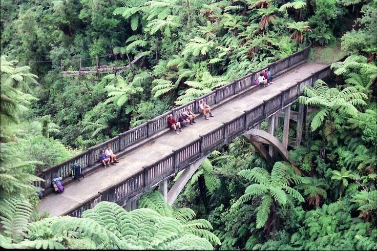 """One of the most visited attractions in Whanganui National Park, New Zealand, is the """"Bridge to Nowhere"""" - an abandoned and isolated concrete bridge spanning the Mangapurua Stream in the middle of the rainforest. With no roads leading to it, the bridge looks ridiculously out of place. It is accessible only by jet boat or kayak, followed by a 40 minute hike along maintained bush trails."""