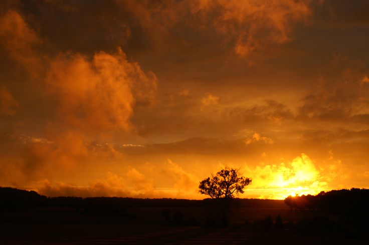 sky  after storm, orange sky, sunset, view