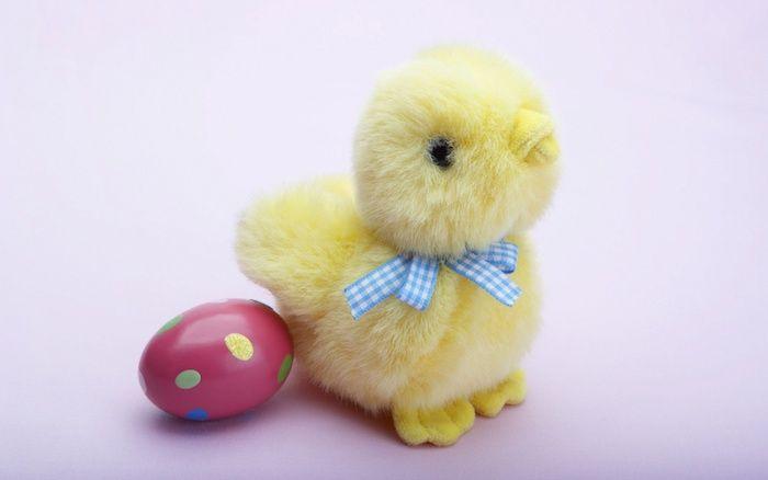 1001 Lustige Osterbilder Und Einzigartige Ostergrusse Lustige Bilder Zu Ostern Ostern Lustig Ostern Bilder