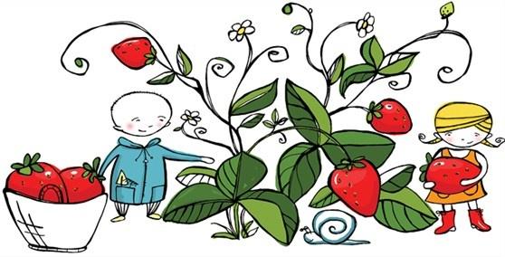 Gardeners picking strawberries, children's  book illustration