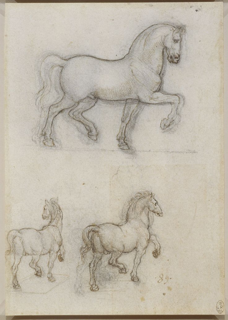 royal pillow drawing. leonardo da vinci, 1452-1519, italian, studies for an equestrian monument, royal pillow drawing