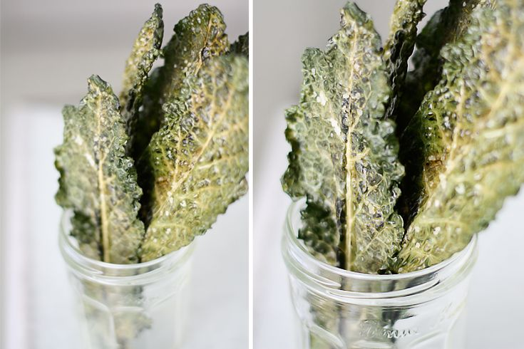 Check out this bouquet of roasted Tuscan Kale from (no surprise) talented photographer Caitlin at Roost: Recipe Food, Tuscan Kale, Kale Chips, Kalechips, Awesome Cooking, Food Recipe, Cooking Guide, Drinks Recipe, Cooking Photos