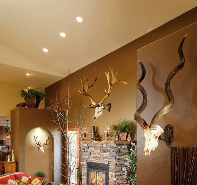 Trophy Room Design Ideas Part - 36: Mounts. Trophy RoomsHouse IdeasTaxidermy