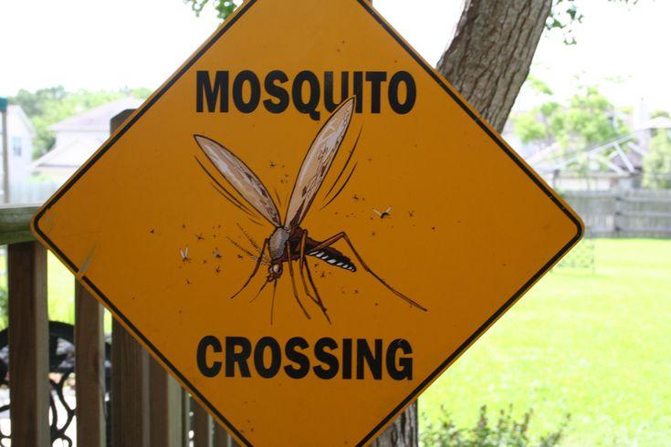 De zomer komt er aan en daarmee ook de muggen. Ik ben geen voorstander van het gebruik van DEET en probeer de muggen op een natuurlijke manier te weren. Zo gebruiken mijn kinderen Parakito muggenbandjes met etherische olie maar je kan ook heel makkelijk zelf anti-muggenspray maken! Monica vanAromatherapie-info.comstuurde hiereen mooi recept voor. Deze insectenspray …