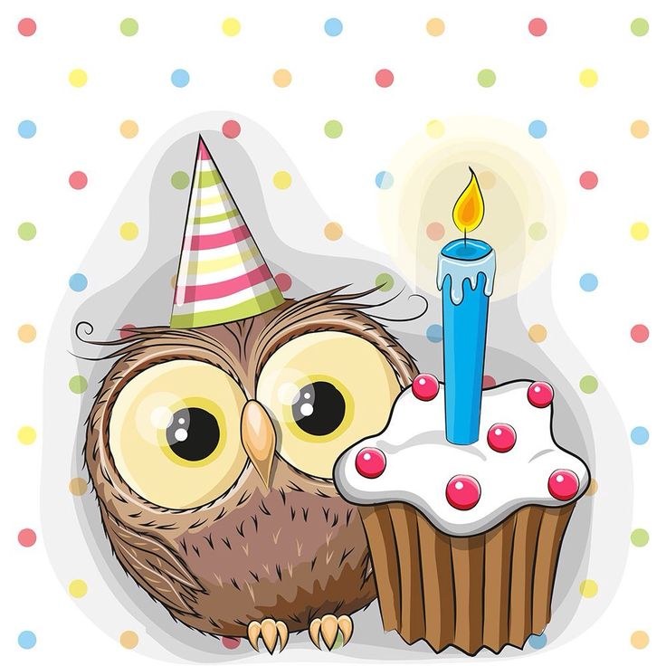 Birthday Owl ~