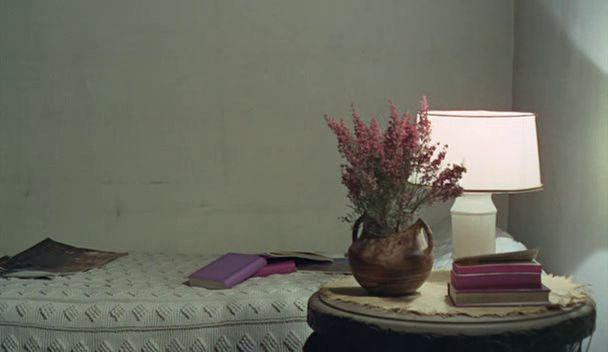 Le bonheur (Agnès Varda, 1965):