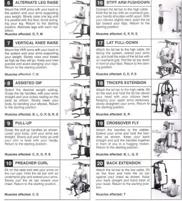 Weider Home Gym Workout Plan Free on york parts
