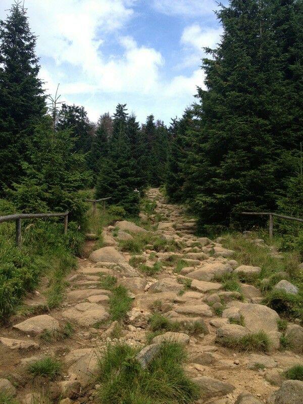 Auf geht's! Harzer-Hexenstieg