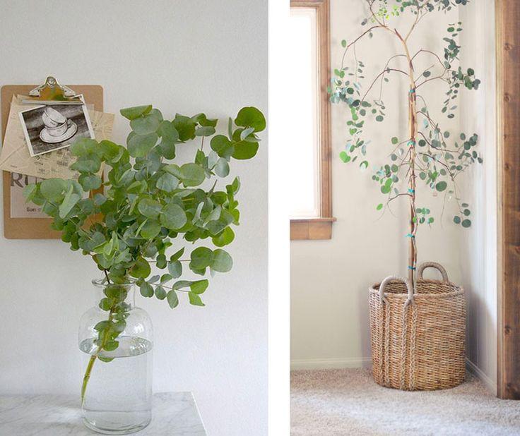 1000 idee n over slaapkamer planten op pinterest planten deco en plantendecor - Wallpaper voor hoofdeinde ...
