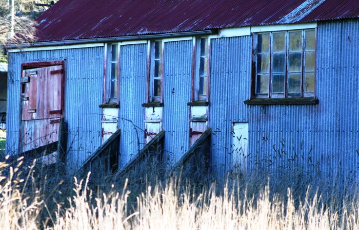 Wool shed New Zealand. www.cosytoes.co.nz