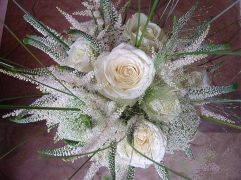 Fluffy veronica, ammi majus soften the blousy cream roses