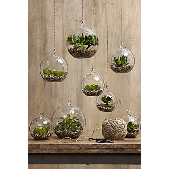 Sphere Hanging Planter (Set of 6) by Rogue