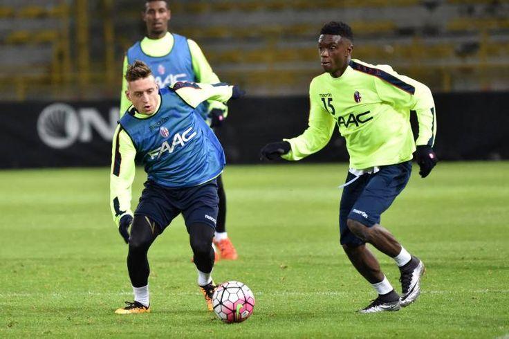 Bologna con i tifosi verso l'Inter, le foto dell'allenamento - Bologna - il Resto del Carlino #Giaccherini
