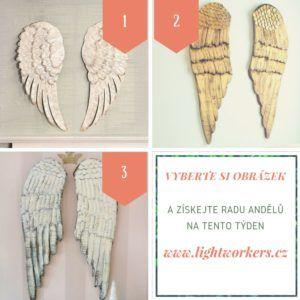 Rady andělů na tento týden