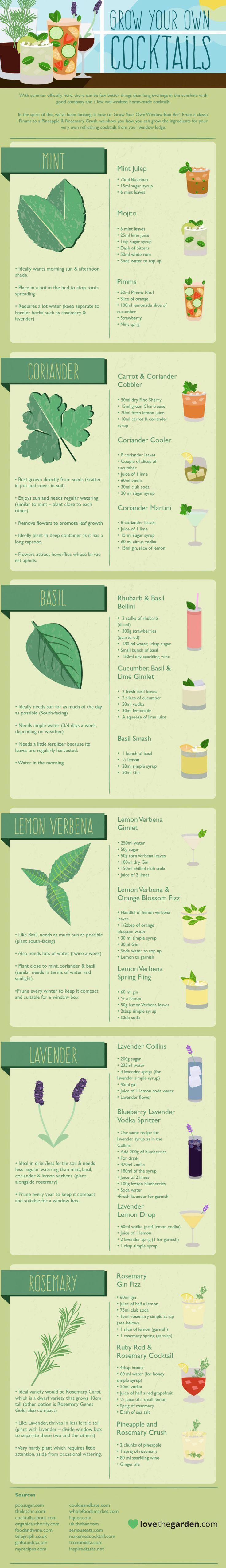 infographic, grow your own cocktail, cocktails, drink recipes, gardening, recipes, garden recipes, herbal cocktails, basil cocktails, lavender cocktails, cocktail recipes, http://inhabitat.com/grow-your-own-cocktails-drink-recipes-from-the-garden/?utm_content=bufferdd31e&utm_medium=social&utm_source=pinterest.com&utm_campaign=buffer