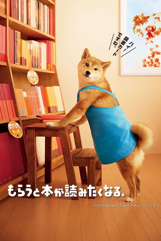2015 autumn/図書カード/ポスター