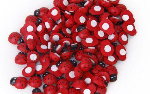 TOOGOO(R) 100 pieces Petits Scarabees en Bois avec Eponges Autocollantes Autocollants de Coccinelle: Autocollant d'eponge et coleoptere…