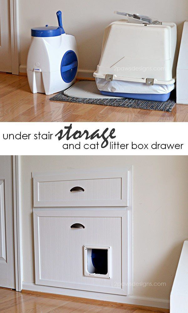 The Cat Drawer