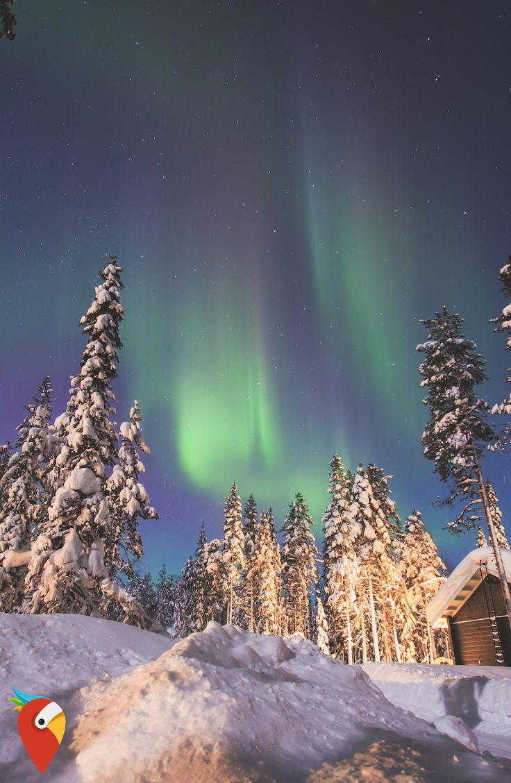 Skandinavien Rundreise - MEGA 😍 #travel #nothernlights #scandinavia