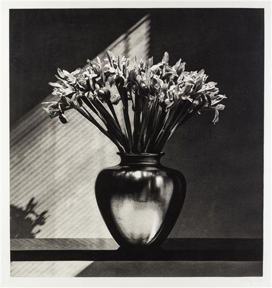 Artwork by Robert Mapplethorpe, Irises, Made of photogravure