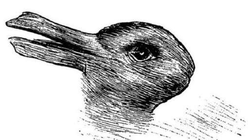 Zie je een eend of konijn