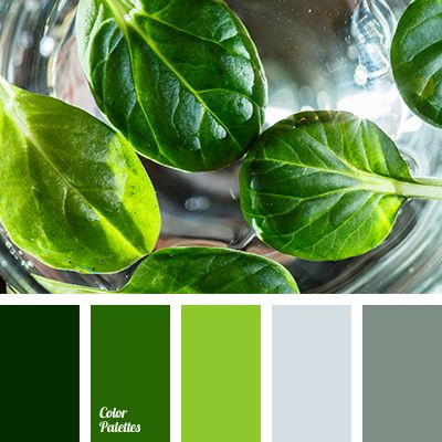 basil color, color matching, color of basil leaves, dark green color, gray color, green shades, grey-green color, lime color, olive color, pale-grey color, winter fog color, winter palette 2016.
