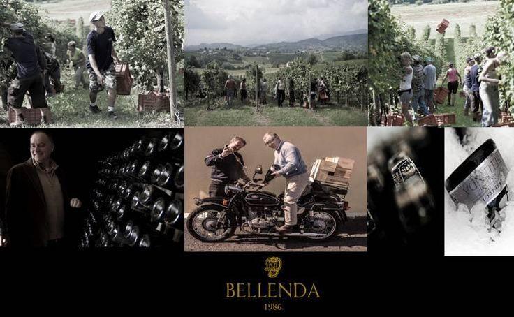 #bellenda & The Best Shops www.bellenda.it un sentito grazie all'azienda vinicola Bellenda