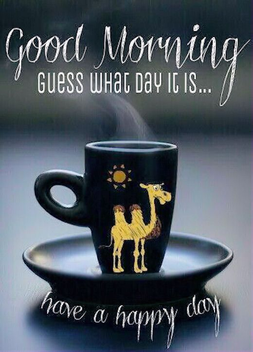 Good Morning Guess What Day It Is Pictures, Photos, and Images for Facebook, Tumblr, Pinterest, and Twitter