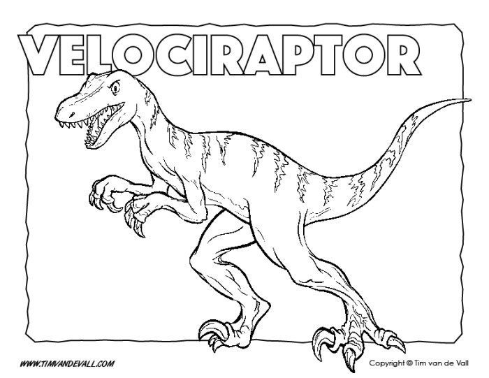 Velociraptor Coloring Page Dinosaur Coloring Pages Tim S
