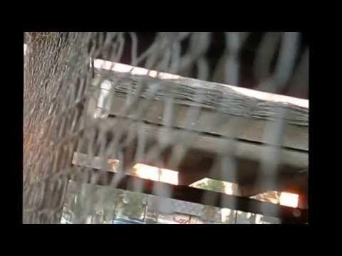 CARLOS SANTANA Samba Ole! 2007 Guitarra MP4
