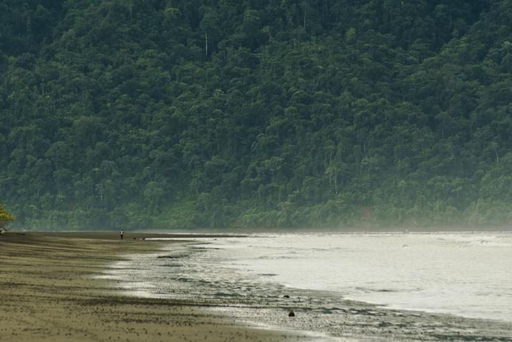 The Pacific - Bahia Solano