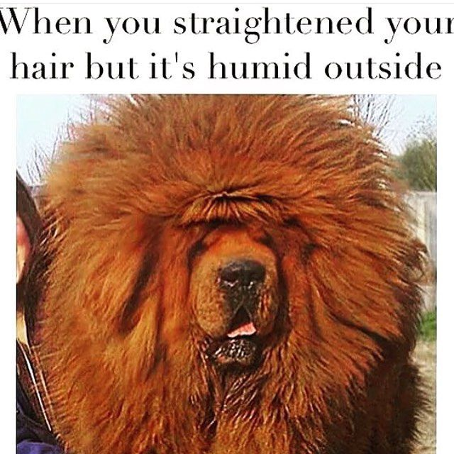 humidity problems