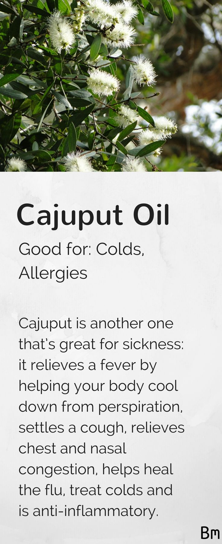 Cajuput essential oil (or cajeput oil) relieves fever by helping your body cool down through sweating, it helps ease a cough, relieves chest and nasal congestion, and helps you recover from a cold. Diffuse this oil by your bed using an oil diffuser or use a few drops in a body lotion, so you can massage the mixture onto your chest. Click on the pin to learn more about essential oils!