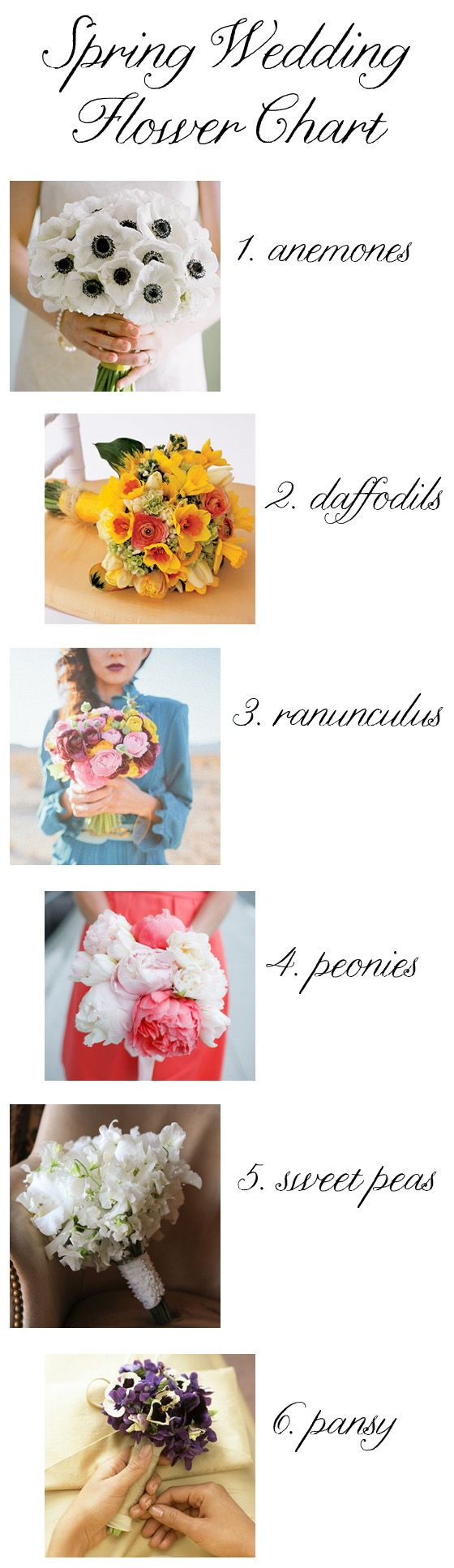 In need of some flower ideas for your spring wedding bouquets? This helpful little chart will get your wheels turning.  Our wedding is in early May.  Unfortunately, peonies aren't really in season until later in May and into June. We'll substitute with garden roses.