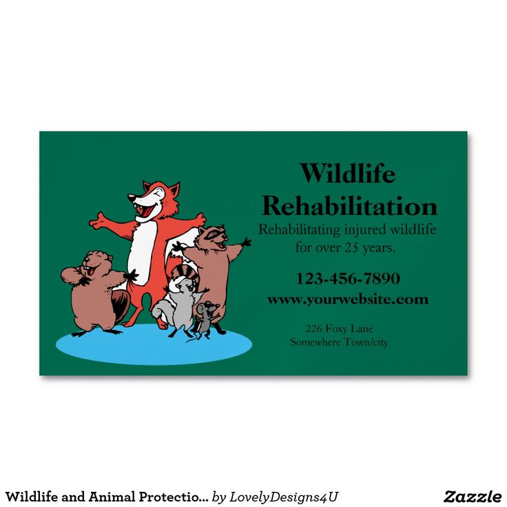 Wildlife and Animal Protection or Care Business Card Magnet