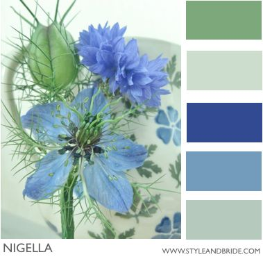 Color Board for blues and sage green - Kitchen Colors???