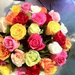 A bunch of coloured roses from Roses2Go are just what the Dr ordered    For more arrangements visit: http://roses2go.com.au/store/cart.php