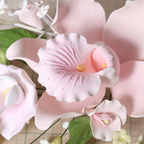 Large Cymbidium Orchid Sprays - Pink