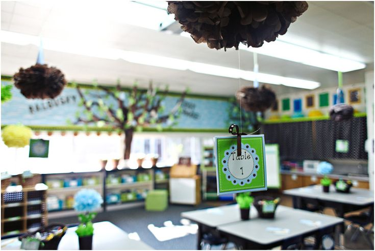 Classroom Ideas With Birds ~ Best images about classroom ideas on pinterest