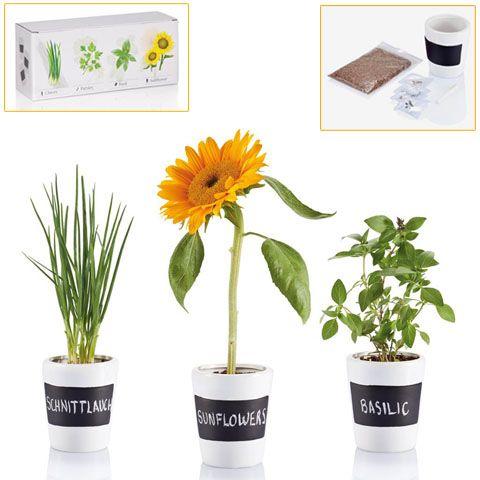 Set de macetas. Incluye tiza, abono y semillas. Desde  11,75 € en www.areadifusion.com