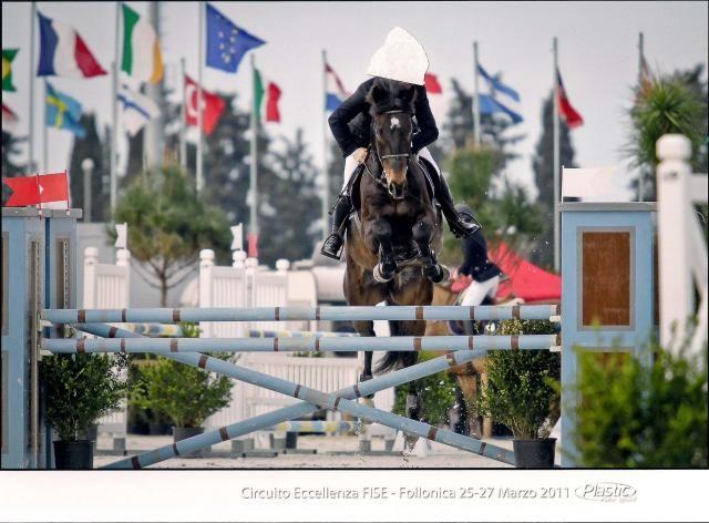 Anglo arabo https://www.equirodi.it/annunci/cavalli-in-vendita/anglo-arabo.htm  Causa trasferimento cedo splendido cavallo anglo arabo per salto ostacoli, cat. c120/130, documenti unire.