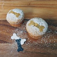 Rachel Ray Dog Birthday Cake Recipes