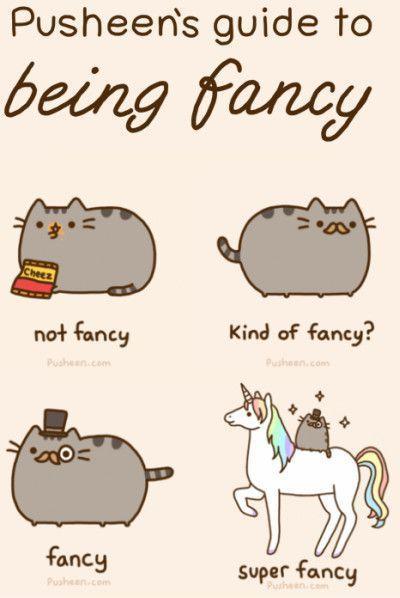 Juggling Cats Gif