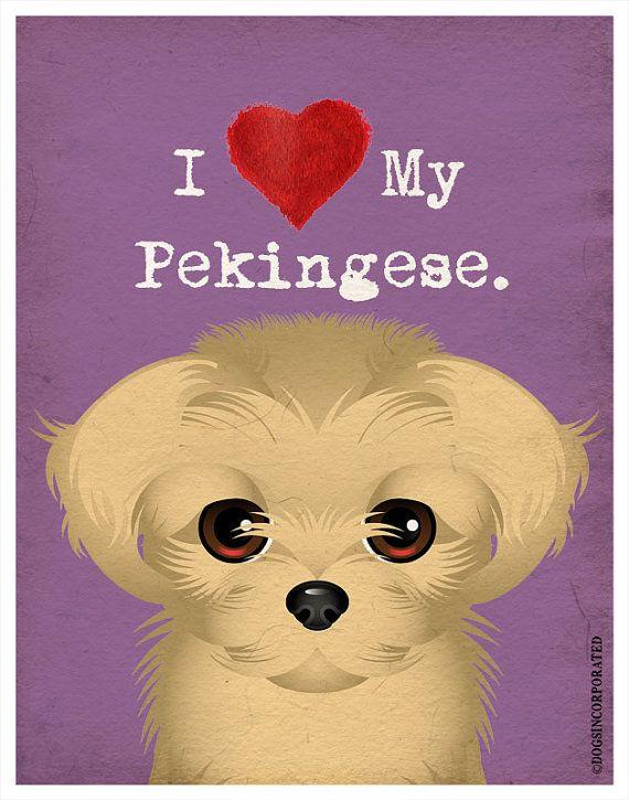 I Love My Pekingese  I Heart My Pekingese  I by DogsIncorporated, $20.00 #Etsy