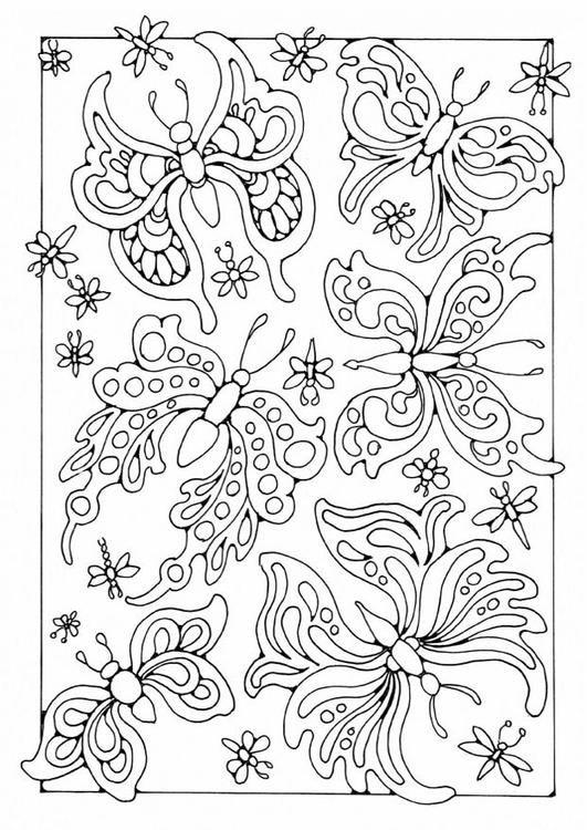 Målarbild fjärilar. Barn lär sg om fjärilar medan de färglägger| Bilder som kan användas i skolan - Bild 18699.