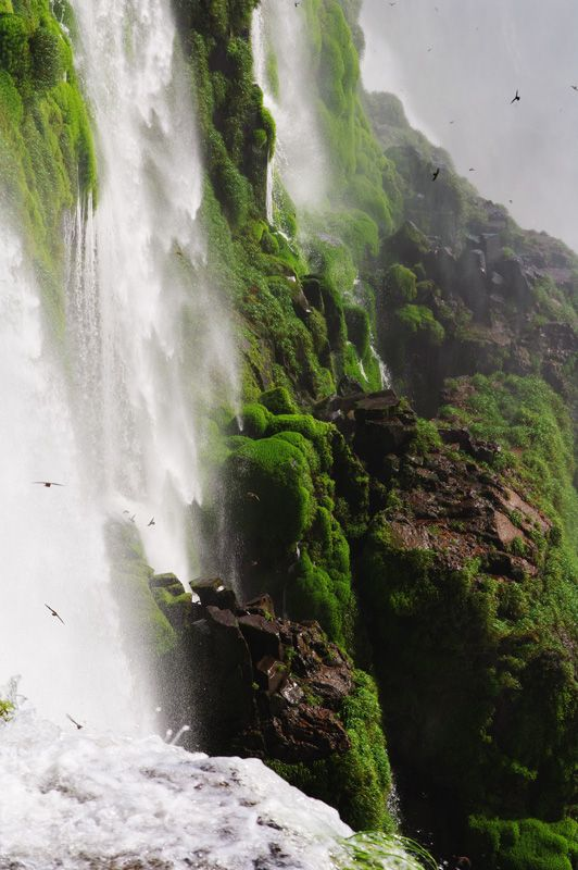 Stunning Iguazu Falls ❀✮ Argentina ✮❀ I Almost Can Feel, Hear And Smell This Moment ~* Wonderful Creation *~⊙‿⊙~