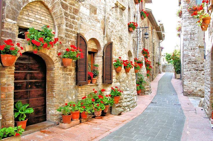 Widoki na dziś poleca http://www.fototapeta24.pl/  #fototapeta #fototapeta24pl #fototapety #uliczka #kwiaty #flowers