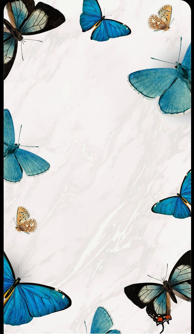 Pin by Milley on Cute wallpapers in 2020   Butterfly ...