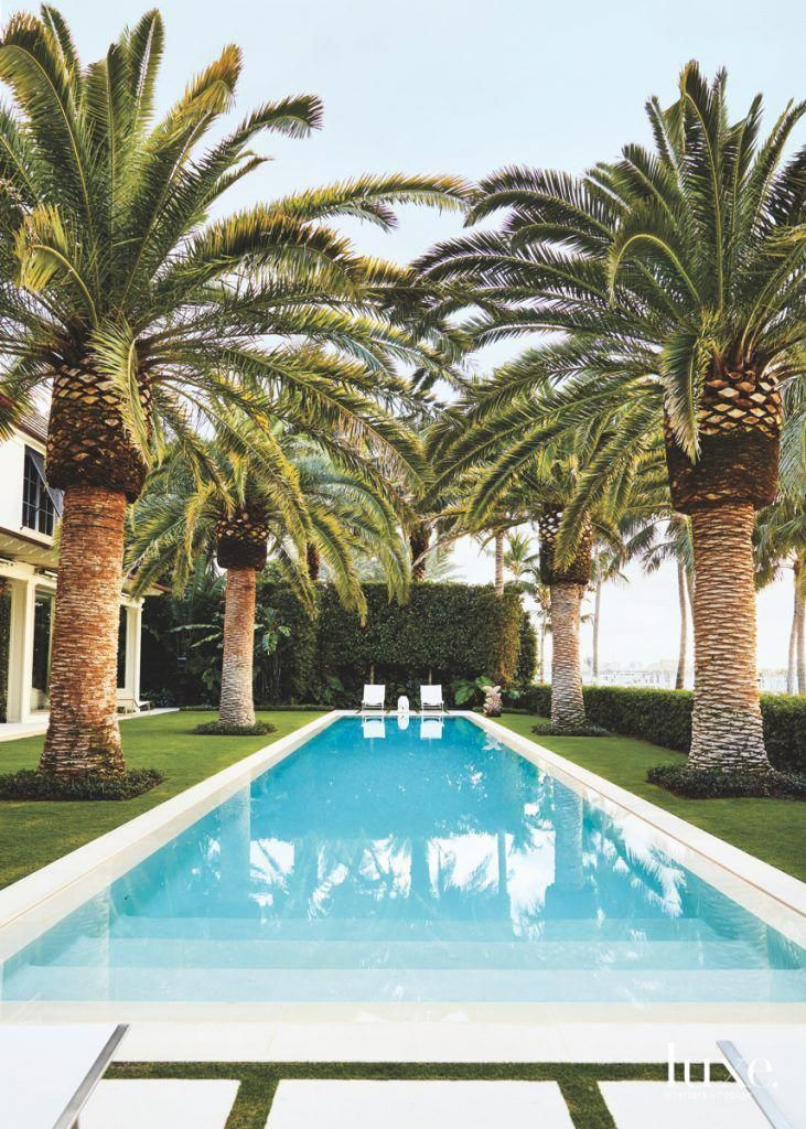 Old-growth palm trees surrounding a backyard pool is what dreams are